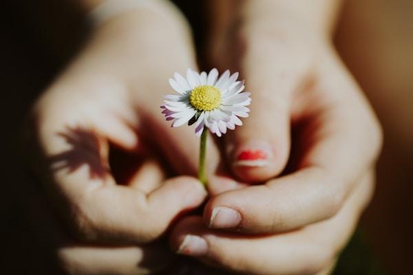 Eine Frau hält eine Blume in der Hand.
